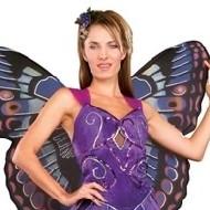 papillon pourpre deguisement science fiction. Black Bedroom Furniture Sets. Home Design Ideas